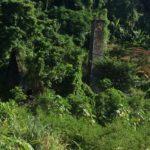 lot 9a old mill development, Castle Comfort, Roseau