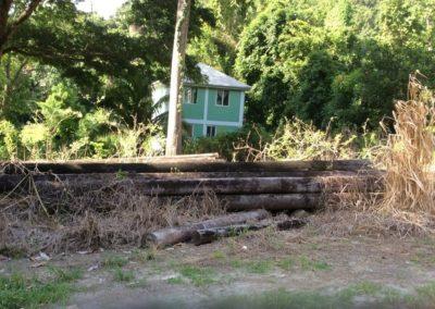 Lot 14 - Castle Comfort, Dominica